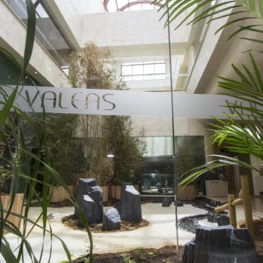 Valeas Club